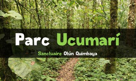 Parc Ucumarí : Sanctuaire Otún Quimbaya en Colombie