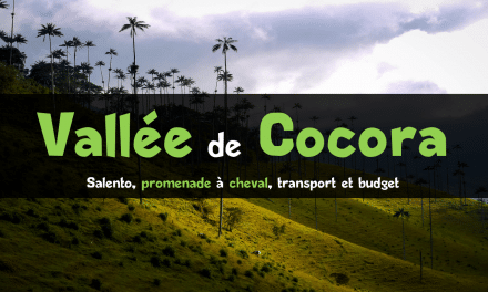 La Vallée de Cocora : monter à cheval en Colombie